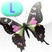 Insect Life Cycle – LAZ Reader [Level L–second grade]